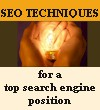 SEO optimization techniques for a top search engine position